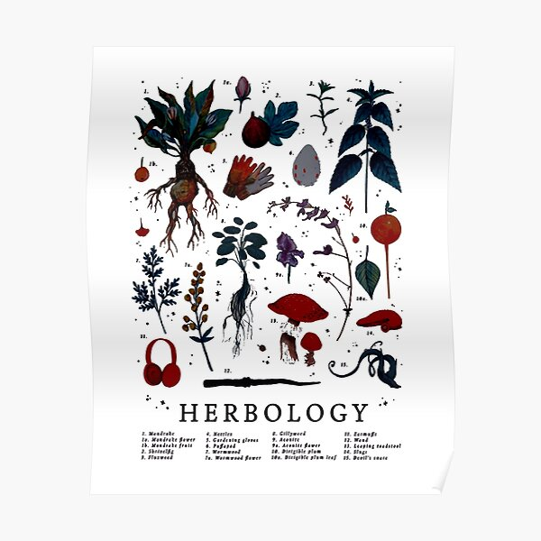 Herbology Harry Plant Poster