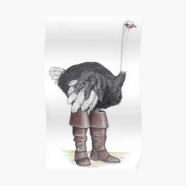 Ostrich in Musketeer boots Poster