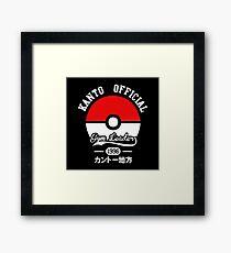 Pokeball Pokemon Framed Print