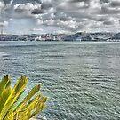 the river in Lisbon by terezadelpilar ~ art & architecture