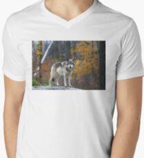 Timber Wolf Men's V-Neck T-Shirt