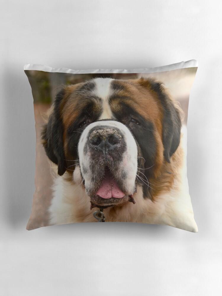 Quot St Bernard Dog Ready For A Hug Quot Throw Pillows By