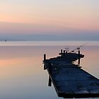 Floating in dawn light, Pontile Spagnoli, Castiglione del Lago, Lago Trasimeno, Umbria, Italy by Andrew Jones