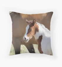 Hi...I Already Have Wiskers!! Throw Pillow