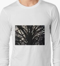 Sun behind the branches T-Shirt