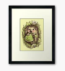 Little hedgehog colored Framed Print