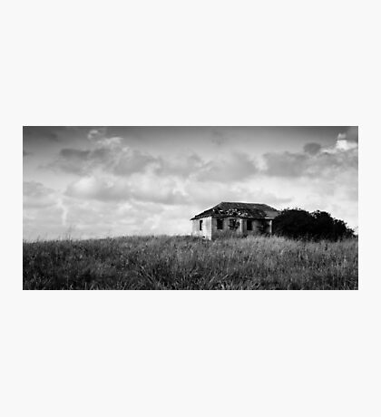 abandoned in grasses Photographic Print