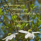 Always Beside You by Scott Mitchell