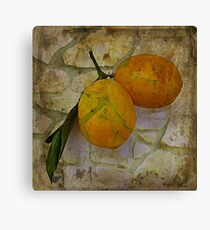 Bitter Lemons Canvas Print