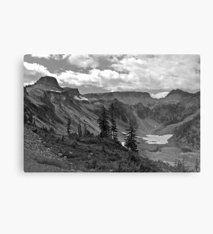 heather meadows, wa, usa Metal Print