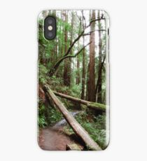 Tamalpais Hike - Trees iPhone Case/Skin