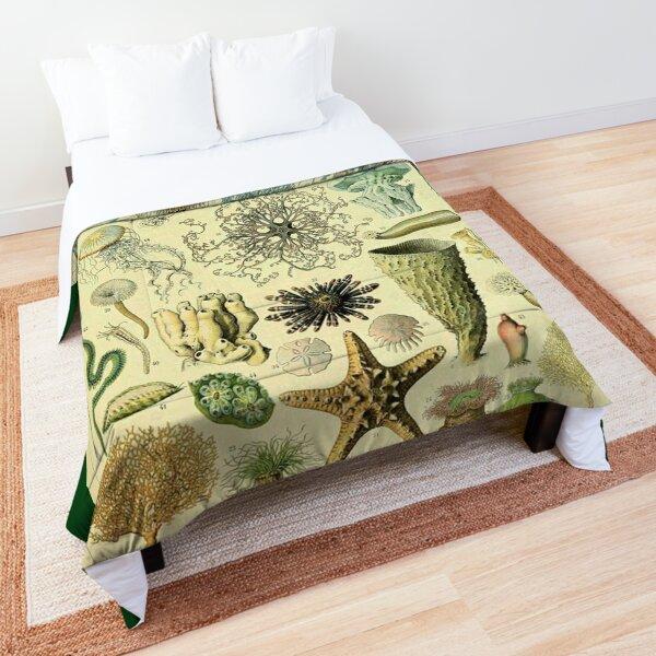 Sea Life Comforter