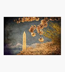 The Washington Monument Photographic Print