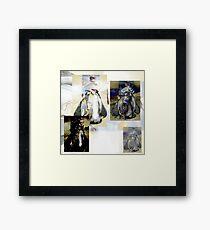 Four Penguin Divas -  Framed Print