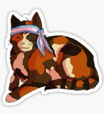 Pride Kittens: Transgender Sticker