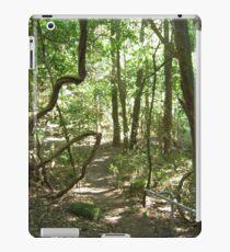 Jamberoo Bush Track iPad Case/Skin