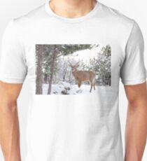 Frosty Buck - White-tailed Buck, Ottawa T-Shirt