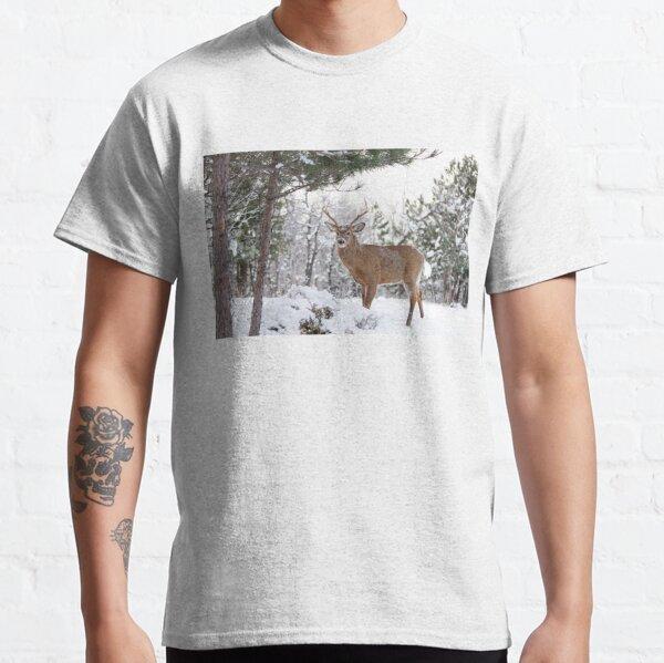 Frosty Buck - White-tailed Buck, Ottawa Classic T-Shirt