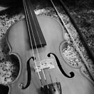 Violin in black and white by nksran