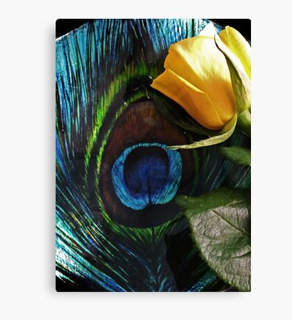 Peacock's Rose Canvas Print