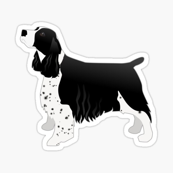 English Springer Spaniel Gifts & Merchandise
