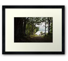 Path through Woods Framed Print