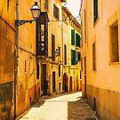 An alley in Palma de Mallorca. by naranzaria