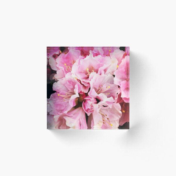 Flower Fever Acrylic Block