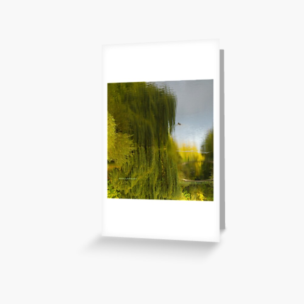 Reflected Willow Greeting Card
