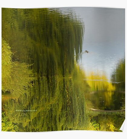 Reflected Willow Poster