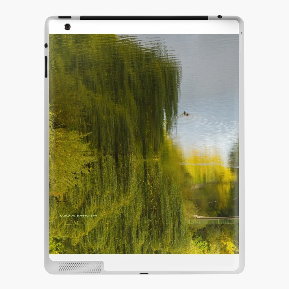 Reflected Willow iPad Case & Skin