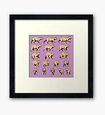 Turning Cat Framed Print