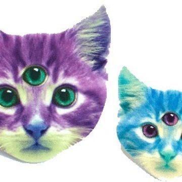 Gatos locos de Canyounotqueenb