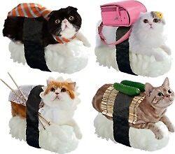 «Gatos de sushi» de Canyounotqueenb