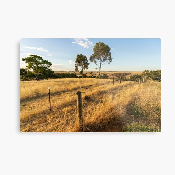 A country landscape Metal Print