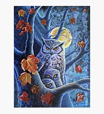 Harvest Moon Owls Photographic Print