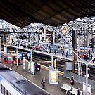 Platform 9 and three quarters - Melbourne Australia by Norman Repacholi