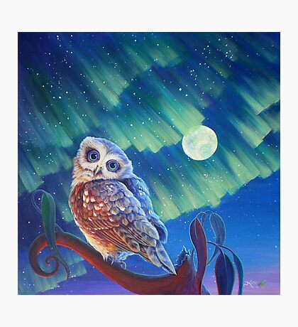 Aurora Owl Photographic Print
