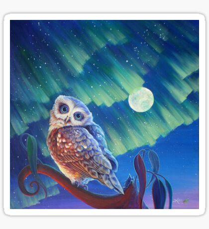 Aurora Owl Sticker