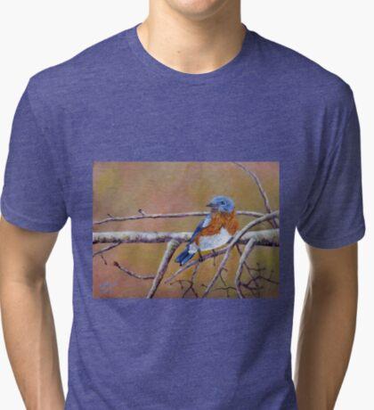 Bluey Tri-blend T-Shirt