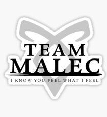 Pegatina Cazadores de sombras - Team Malec