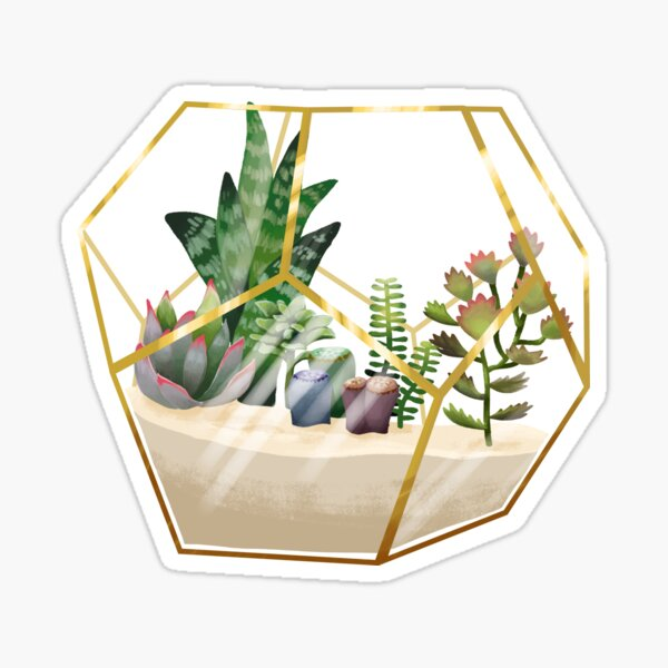 Terrarium mit Sukkulenten Sticker