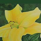 Yellow Lily by LindaZArtist