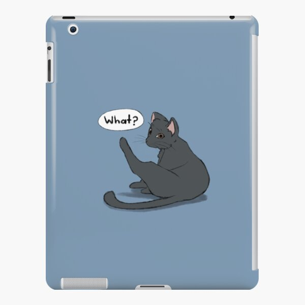 What? iPad Snap Case