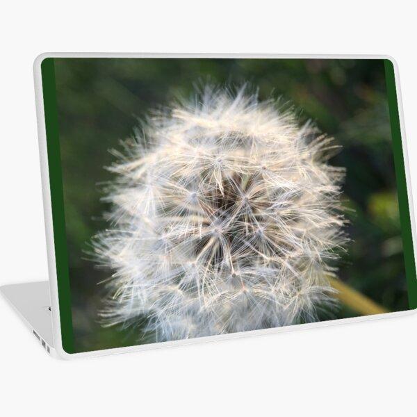 Dandelion  Laptop Skin