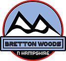 BRETTON WOODS NEW HAMPSHIRE Skiing Ski Mountain Art by MyHandmadeSigns