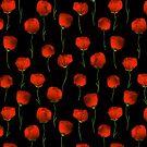 Poppy by Richard Laschon