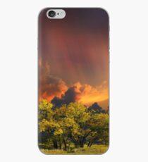 4007 iPhone Case