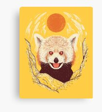Red Panda on a Sunny Day Canvas Print