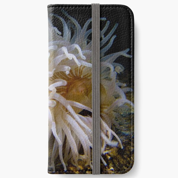 anenome iPhone Wallet